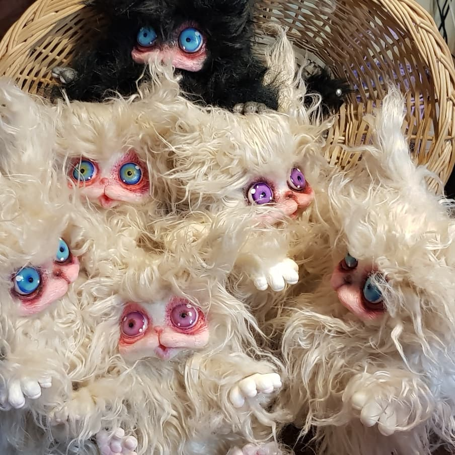 cagliostrino  Cucciolata in bianco e nero di magici Cagliostrini quasi pronti all'adozione. Sv... cagliostrino catdoll cats dollmakers famiglio handcrafted handmadedolls pupazzifattiamano